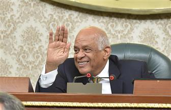 """برغم رفض الهيئات البرلمانية.. مقدمو مشروع قانون الإدارة المحلية: """"مناقشته ضرورة"""""""