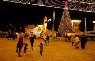 تماثيل وأشجار عيد الميلاد في بيت لحم من أغصان الزيتون
