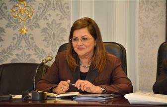 وزيرة التخطيط: اجتماع لجنة إعادة تسعير الطاقة للمصانع سيشهد الانتهاء إلى أسعار أفضل