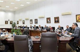 العناني يجتمع بقيادات المجلس الأعلى للآثار | صور