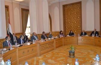 سامح شكري يؤكد أهمية تكثيف الجهود لمواصلة تنفيذ أهداف السياسة الخارجية المصرية
