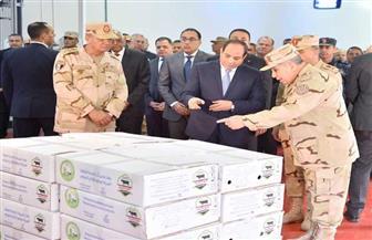 الرئيس السيسي: ما نقوم به ليلا ونهارا للحفاظ على الدولة المصرية من السقوط