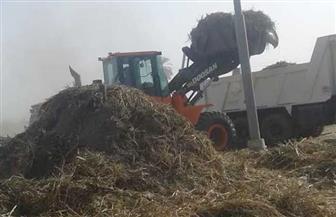 الأقصر تستعد لموسم كسر القصب بفتح الطريق الزراعي ورفع المخلفات | صور
