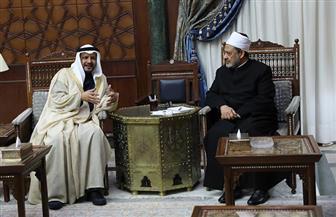 الإمام الأكبر: مستعدون للتعاون مع مؤسسة زايد لدعم القارة الإفريقية | صور