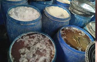 ضبط 22 طن مخللات فاسدة بمصنع غير مرخص في الإسكندرية