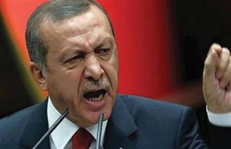 أردوغان: تركيا وليبيا قد تتعاقدان مع شركات للتنقيب عن النفط والغاز بشرق المتوسط