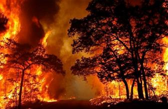 أستراليا تستعد لموجة حارة جديدة.. واستمرار الحرائق في نيو ساوث ويلز