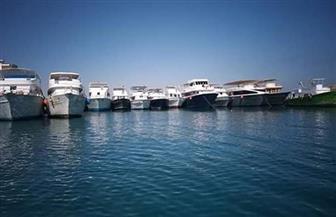 استمرار توقف الرحلات البحرية بالبحر الأحمر لليوم الثاني اعتراضا على قرار زيادة رسوم زيارة المحميات | صور