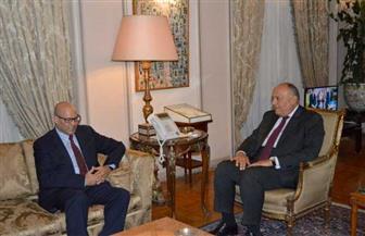 سامح شكري يستقبل نائب رئيس المجلس الرئاسي الليبي