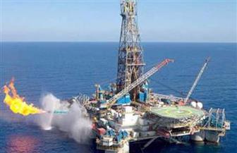 ارتفاع إنتاج الثروة البترولية إلى 84.2 مليون طن خلال 2019 بزيادة 7%