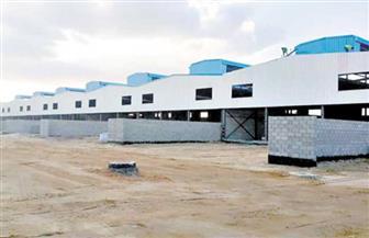 مستشار رئيس الوزراء: إنشاء جامعات تكنولوجية ومدارس فنية بالقرب من المناطق الصناعية