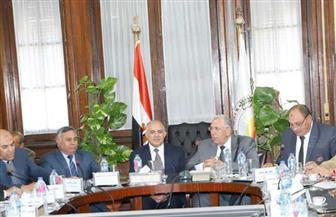 وزيرا الزراعة والري يبحثان القضايا المشتركة| صور