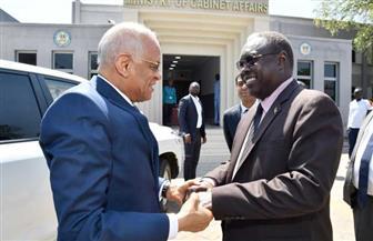 رئيس مجلس النواب يلتقي وزير شئون مجلس الوزراء في جنوب السودان | صور