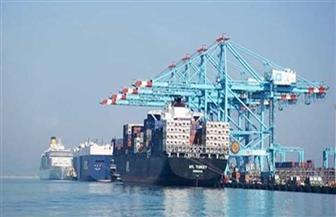 وصول 2975 رأس ماشية حية من أمريكا لميناء الإسكندرية