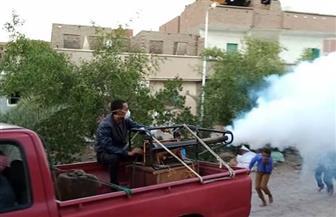 حملة مكبرة لمكافحة الأمراض المتوطنة في منطقة زرزارة بمدينة سفاجا | صور