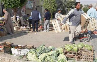 رئيس جهاز 15 مايو يقود حملة مكبرة للتصدي للتعديات والمخالفات بالمدينة