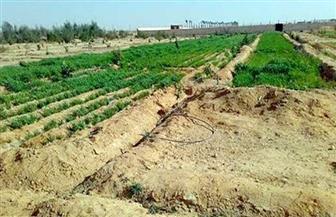 ضبط موظف بتهمة تمكين أشخاص من بناء عقارات على أراض زراعية مخالفة