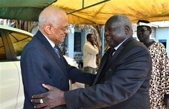 عبدالعال يلتقي رئيس مجلس الولايات بالإنابة في جنوب السودان| صور