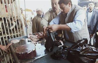 تحرير محضر جنح أمن دولة طوارئ لصاحب محل دواجن بكفرالشيخ لحقن الدواجن بالمياه | صور