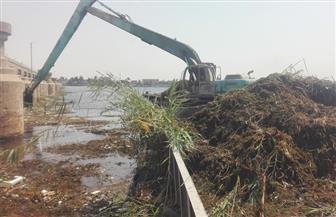 الري: تحصيل 107 ملايين جنيه لخزانة الدولة مقابل الانتفاع بنهر النيل وفرعيه في 5 أشهر| صور