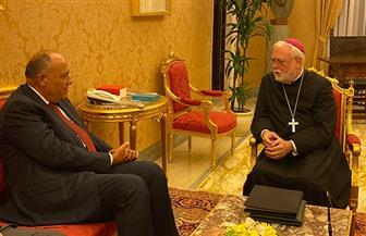 شكري يعقد لقاء ثنائيا مع وزير خارجية الفاتيكان