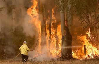 ولاية أسترالية تعلن حالة الطوارئ بسبب حرائق الغابات وارتفاع درجة الحرارة