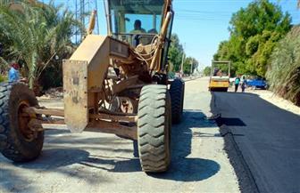 6 ملايين جنيه لأعمال رصف الطرق بـ5 مراكز بالوادي الجديد | صور