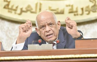 رئيس البرلمان ينتقد الحكومة: بعض الوزراء متخصصون في تصدير المشكلات للرئيس