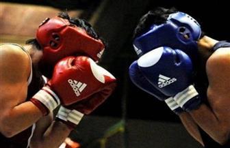 """اتحاد الملاكمة"""" يقرر ممارسة اللعبة والبطولات بدون جمهور"""