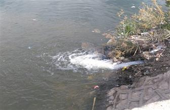 تطهير شبكات مياه الشرب بأرمنت في الأقصر| صور