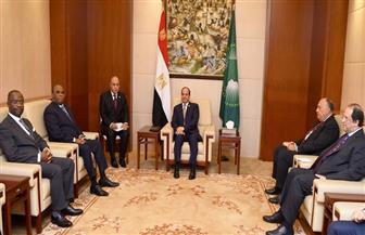 الرئيس السيسي يلتقي رئيس البنك الإفريقي للتصدير والاستيراد لبحث التعاون| صور