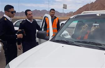 مرور جنوب سيناء: بدء تركيب اللاصق الإلكتروني بجميع وحدات التراخيص| صور