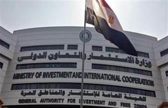 """""""الاستثمار"""": صدور فتوى مجلس الدولة حول آلية تحصيل رسوم المناطق الحرة"""