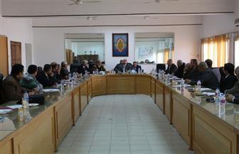 تشكيل لجنة لاختيار عميد كلية التربية الرياضية بجامعة المنصورة