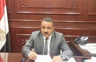 """برلمانية """"مستقبل وطن"""" توافق على التعديلات الدستورية.. وتؤكد: ترسخ لمزيد من الحريات"""
