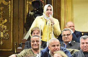 """""""النواب"""" يوافق على مبدأ التعديلات الدستورية ويحيلها إلى اللجنة التشريعية"""