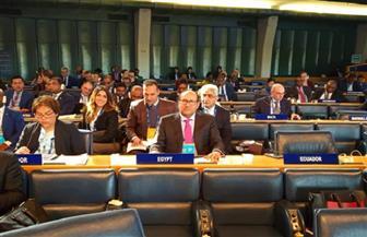 خلال اجتماعات الإيفاد.. مصر تؤكد أهمية القطاع الخاص فى التنمية المستدامة