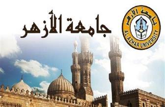 لتقوية العلاقات المصرية – الإفريقية.. المركز الإسلامي بالأزهر يعقد دورة تدريبية للقيادات الدينية بموريتانيا