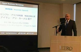 السفارة المصرية في طوكيو تكثف جهودها لإيفاد بعثة من كبريات الشركات اليابانية للقاهرة