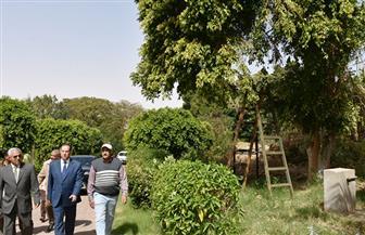 محافظ أسوان يتفقد الحديقة الاستوائية تمهيدا لوضعها على الخريطة السياحية | صور