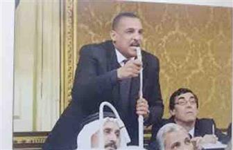 """برلماني: حملة الإخوان ممولة من أطراف كارهة لمصر.. و""""فيديو السكة الحديد"""" تزييف للحقائق"""