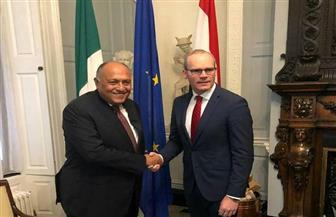 وزيرا خارجية مصر وأيرلندا يؤكدان أهمية استمرار تطوير العلاقات الاقتصادية