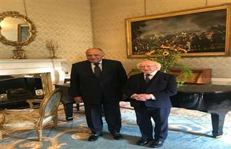 الرئيس الأيرلندي يستقبل سامح شكرى لبحث تعزيز التعاون بين البلدين | صور