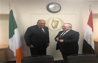 سامح شكري يلتقي رئيس البرلمان الأيرلندي