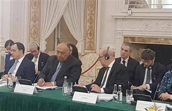وزير الخارجية يؤكد أهمية التمسك بحل الدولتين خلال اجتماع دبلن التشاورى بشأن فلسطين