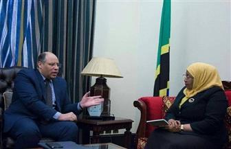 السفير المصري في تنزانيا يبحث مع نائبة الرئيس تطوير العلاقات الثنائية | صور