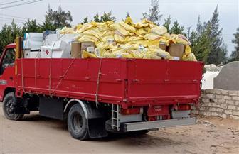 الزراعة: ضبط 25 طن مبيدات مجهولة المصدر بالنوبارية | صور