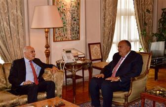 وزير الخارجية يلتقي أمين سر اللجنة المركزية لحركة فتح.. ويبحث آخر التطورات على الساحة الفلسطينية
