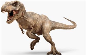 """""""تيرانوصور"""" صغير يفك شفرة ظهور الكائنات الضخمة"""