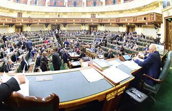 تأشيرات الدخول بين مصر وليتوانيا على مائدة البرلمان.. الأحد | نص كامل